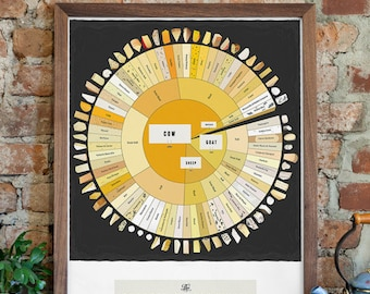 Cheese Types Poster - The Charted Cheese Wheel (18 x 24 Print)