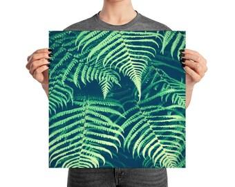 Wall Art Print, Poster Print, Fern Art Print, Fern Photograph, Botanical Art Print, Photography Art Print, Photograph Art Print