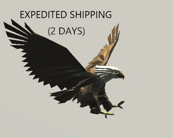 Expedited Shipping in the United States