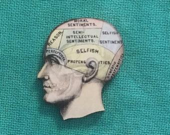 Phrenology Head Wooden Needle Minder