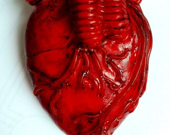 brooch heart, human heart, free shipping anatomical heart, red, red heart, doctor gift, original gift, heart made of polymer clay, gift