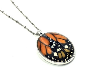 Real butterfly pendant Real Orange Monarch butterfly wing necklace Angel wing necklace Wearable wings Oddities Monarch butterfly jewelry