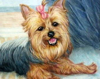 Custom dog portrait, Yorkie art, custom pet portrait artist Robin Zebley, Yorkshire Terrier