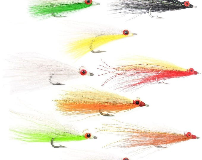 Clousers Minnow Fly Fishing Flies Collection - Assortment of 9 Saltwater and Bass Flies - Hook Size 1/0