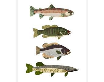 Fish Art Print - Collage Illustration - Rustic Print
