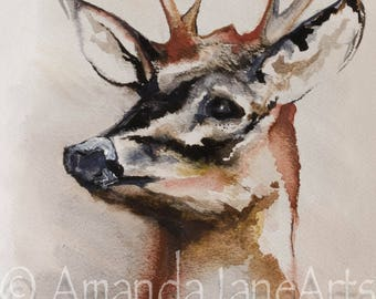 Stag's Head, deer,original painting, picture, watercolour, art, animal, nature, gift