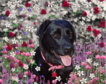 Painting (Digital Collage) - Abby in Flowers - Fine Art Card