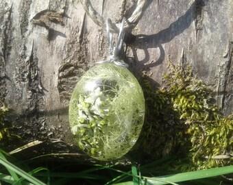 Lichen, moss, terrarium, forest, hippie, pendant, necklace, resin, silver tone, wire wrap, large, oval, glass, hemp, nature