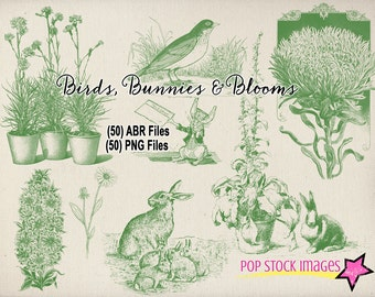 Birds - Bunnies & Blooms Brushes - Photoshop Brushes - 50 Brushes and PNG Files - Spring Rabbits and Birds Floral Photoshop Elements Brushes