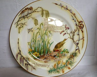 "Caverswall 'Country Diary of an Edwardian Lady' Plate 'February 10 3/4"" 27.5cms"
