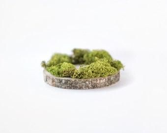 ADD ON Moss for Wedding Base - moss base for custom cake toppers