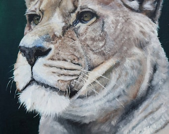 African Lioness (oil painting, 2016)