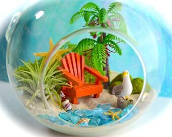 """Beach Terrarium Kit ~ 6"""" Medium Air Plant Terrarium Kits ~ Coastal Living Beach House Decor~ Adirondack Chair ~ Drink Choice ~ Beach Gift"""
