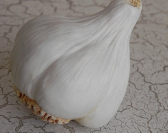 porcelain garlic bulb super realism faux food photo prop