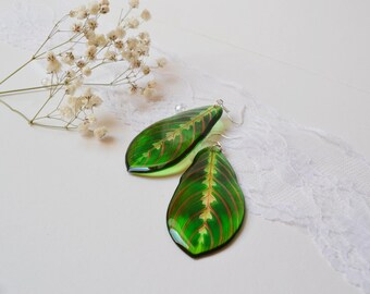 Resin Earrings Transparent Earrings with Green Maranta Leaf Earrings Green Earrings Dangling Eearrings Epoxy Resin Jewelry Gift for Her