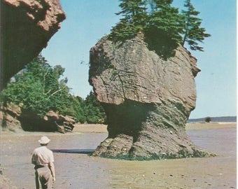 Vintage 1950s Postcard Hopewells Rocks Bay of Fundy New Brunswick NB Canada Big Flower Pot Rock Formations Photochrome Postally Unused