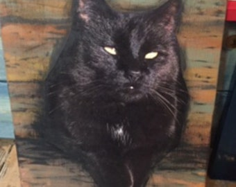 Photo of your cat or dog on a wood board