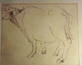 Bison Cattle Bull Original Artist Print Unknown Process Etching Type from unmarked portfolio