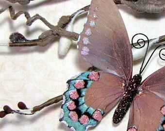 Butterfly Embellishments Bird Song