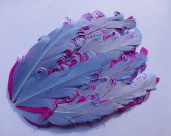 Blue on pink feather pad