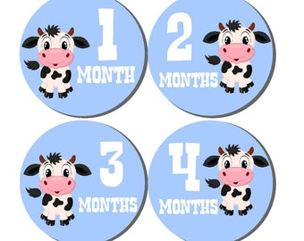 12 month stickers- Monthly Stickers- Milestone Sticker- Baby Month Stickers- Baby Boy Month Stickers- Milestone Baby Month Stickers- B08