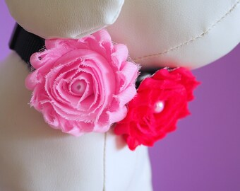 Dog Collar Flower Any Color, Girl Dog Dress Up, Female Collar Bow Chiffon Shabby Flowers Blue, Pink, Purple, Green, Gray, Coral, Aqua, Red