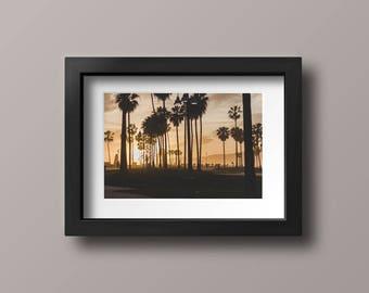 """Venice Beach Photography Print, """"Las Palmas"""""""