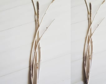 Long Skinny Driftwood Branches for Coastal Home Decorating & Crafts Set of 4 SK4
