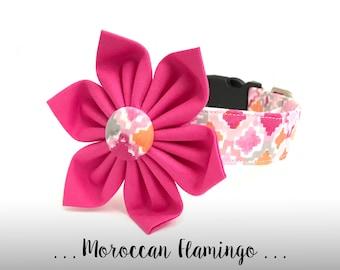 Pink and Orange Dog Collar Flower Set; Girl Dog Flower and Collar: Moroccan Flamingo