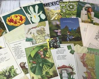 Green Junk Journal Kit, Vintage Book Pages, Vintage Ephemera, Gardening, Green Ephemera, Vintage Papers, Cardstock, Polish, Paper Kit