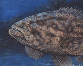 Goliath Grouper - 8 x 10 Fine Art Print - By Laura Airey Le