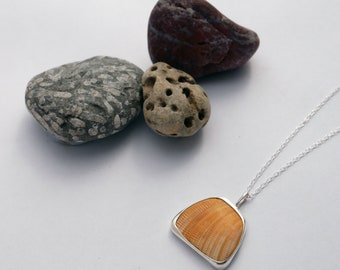 Recycled Sterling Silver & Beautiful Cornish Shell Necklace