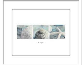 Beach Glass Photo - Starfish Photo - Minimalist Photo - Poster - Beach Glass - Fine Art Photography Print - Blue White Modern Beach Decor