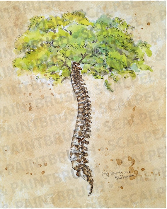 16x20 Arbor Vitae Tree of Life Spine tree