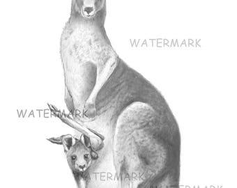 "Eastern Grey Kangaroo and Joey ""Warrandyte Roos"". A4 artists print."