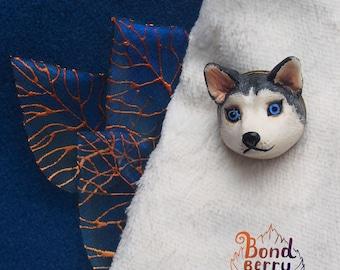 muzzle dogs Blue-eyed husky