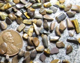Tigereye/ Lionskin Tumbled Micro/ Mini Stones: XXtiny undrilled/ no holes- Choose lots of 100, 250 or 500