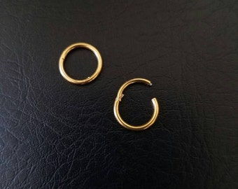 "16g 18g 5/16"" (8mm) Small Gold Titanium anodized 316L Steel Seamless Segment Hinged Ring Hoop eyebrow septum nose smiley helix lip jewelry"