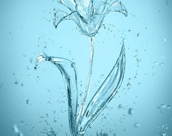 Wall art print, surreal flowers made of water splashes.