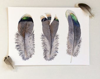 Brown & grey feather print A5, 8x10 inches or A4; horizontal art print; grey wall decor; Crested pigeon feather watercolour print