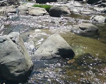 Sunshine on the river rocks
