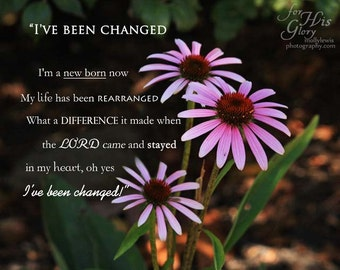 "032 ""I've Been Changed"""
