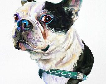 Custom pet portrait, pet portrait, , dog portrait, pet art, dog art, Boston terrier