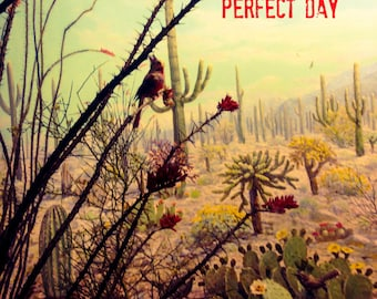 Perfect day, 3 handmade cards