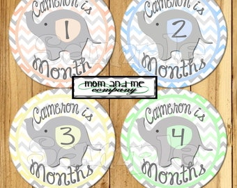 Baby Elephant Monthly Stickers Month Stickers Baby Boy Shower gift custom name stickers infant month stickers Elephant baby decals