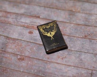 Miniature Book --- Moths & Butterflies