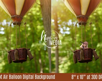 Baby, Toddler, Child, Nature Hot Air Balloon Basket Photography Digital Backdrop Background Prop for Photographers - JPG Download