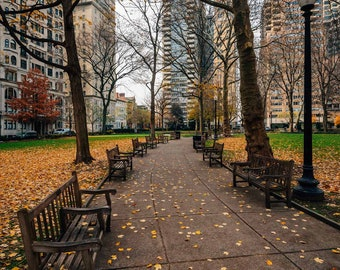 Autumn color and walkway at Rittenhouse Square Park, in Philadelphia, Pennsylvania. Photo Print, Metal, Canvas, Framed.