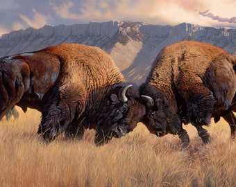 "Northcott Naturescapes When Push Comes to Shove  44"" x 24 Digitally Printed Bison Buffalo  Panel. DP21934-34  Free Shipping"