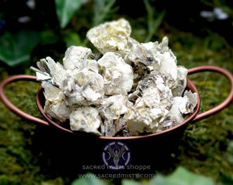 Mica on Matrix for well-being, protection, focus and self-awareness